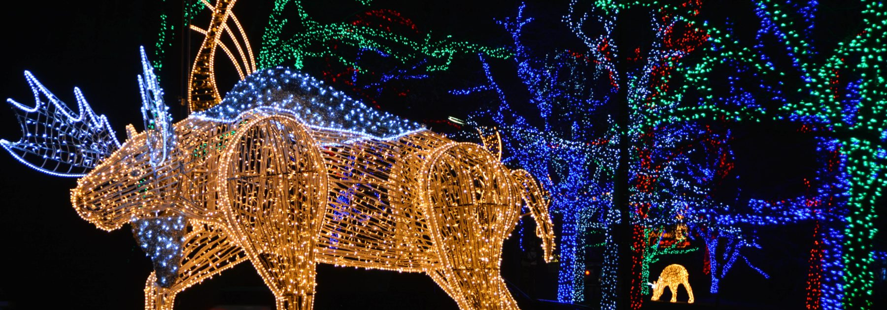 Moose illumination display at Dufferin Islands