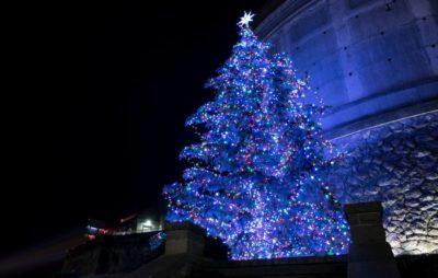 Winter Festival of Lights Christmas Tree
