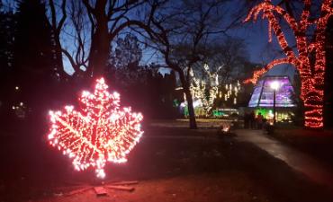 Niagara Falls Illuminations Lighting Displays Winter