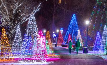 Victoria Park Christmas Lights 2020 Queen Victoria Park | OPG Winter Festival of Lights